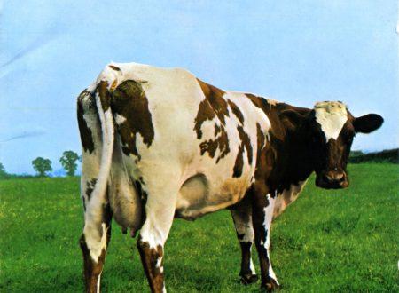 """""""Mamma, guarda: c'è una mucca in giardino!"""". Le colazioni psichedeliche dei Pink Floyd: iperrealismo, cereali e mamme dal cuore atomico (di Alessandro Di Giuseppe)"""